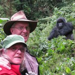 Gorilla tracking Costs