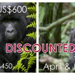 April May Budget Uganda Safaris